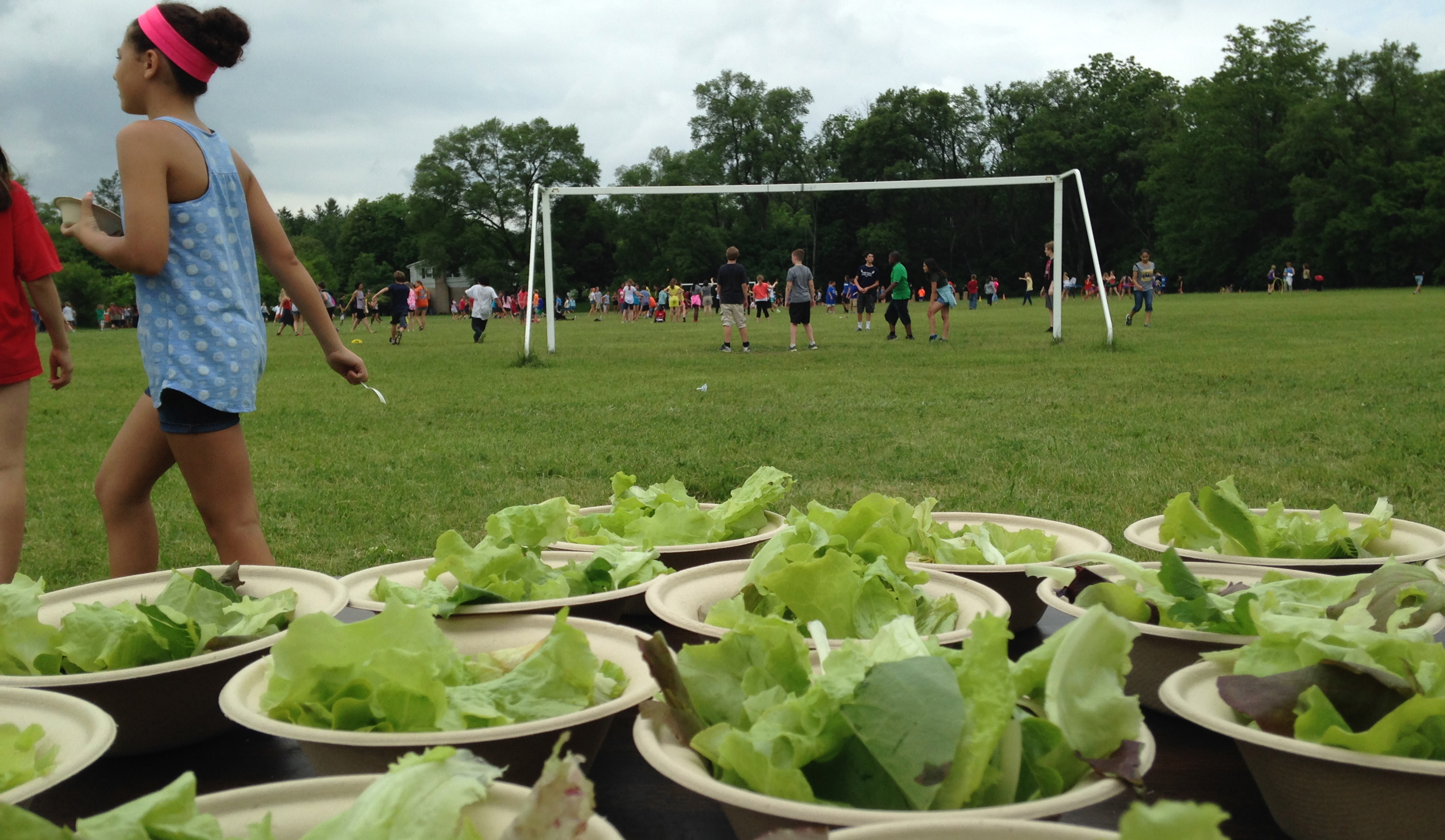 Organic Schoolyard Food Production